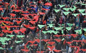 Ternana (Photo by Giuseppe Bellini/Getty Images)