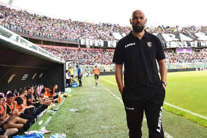 Serie B Palermo esonero Tedino Stellone Verona Grosso quinta giornata Lecce