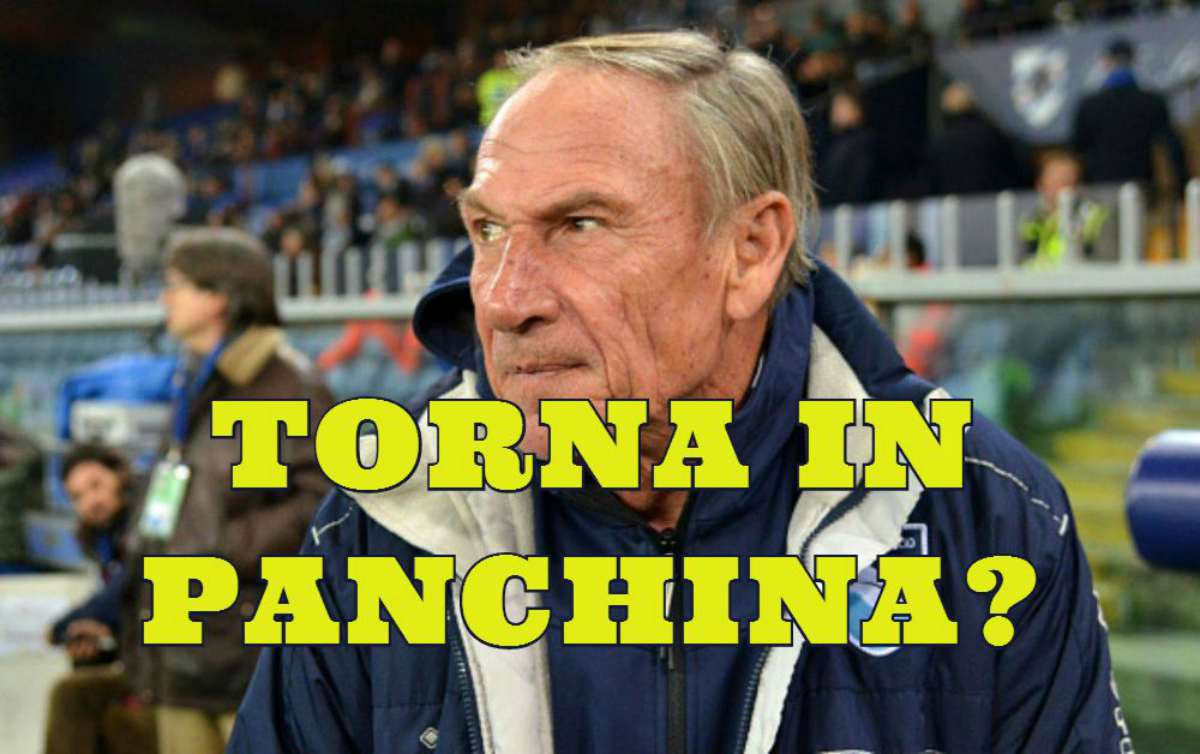 serie b zeman torna in panchina?
