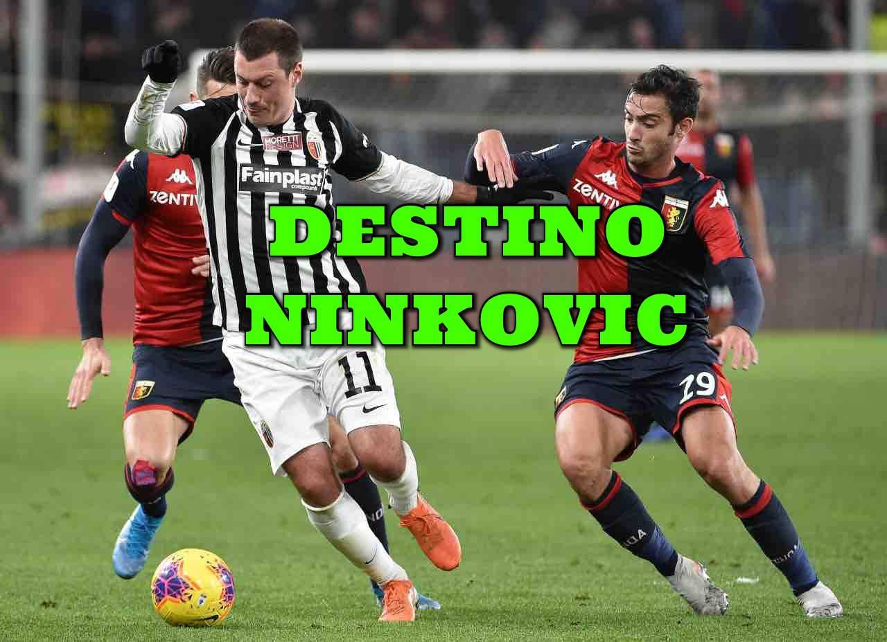 Calciomercato Ascoli Ninkovic Pulcinelli Serie B