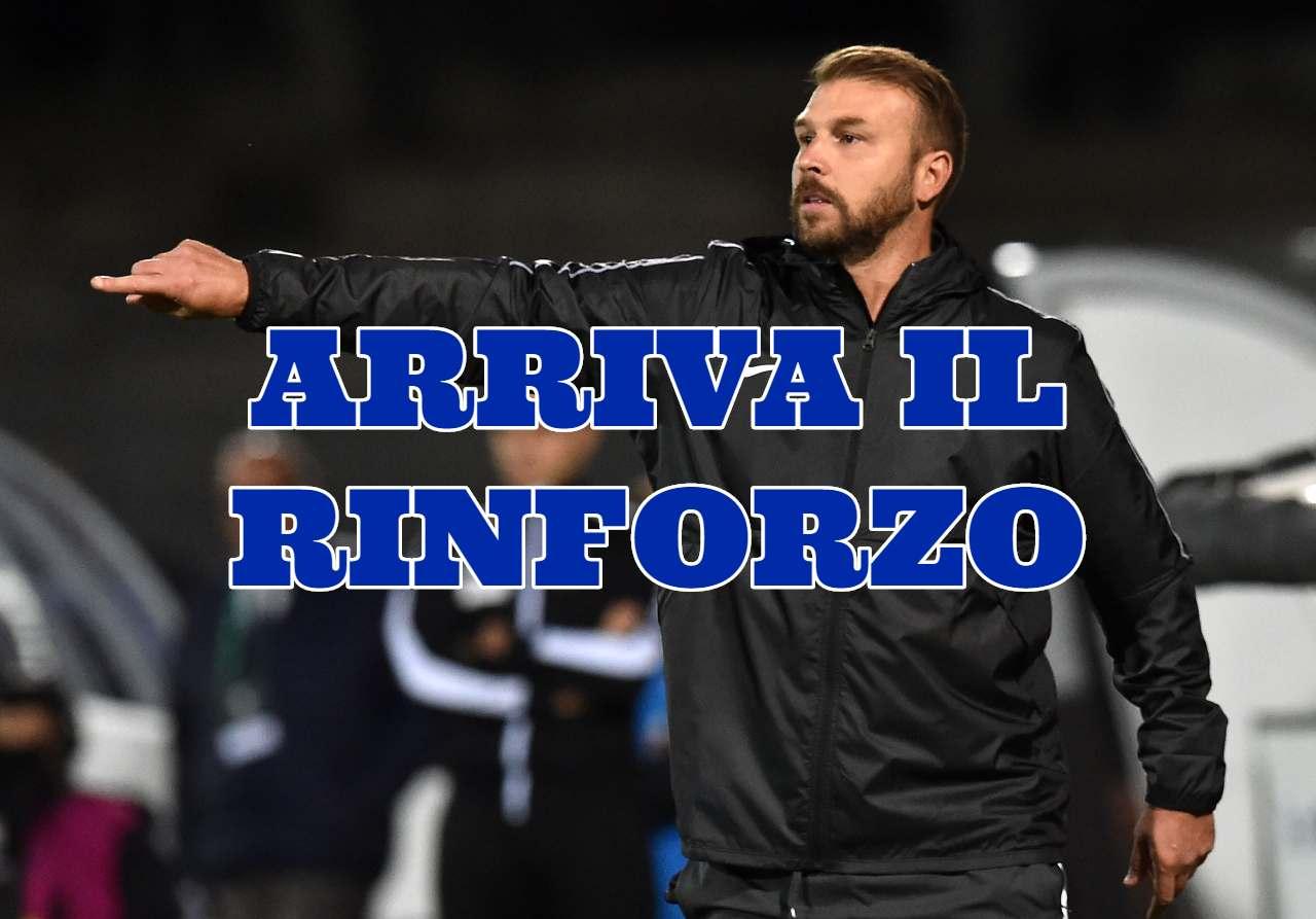 Calciomercato Ascoli Gori Frosinone Nesta Zanetti