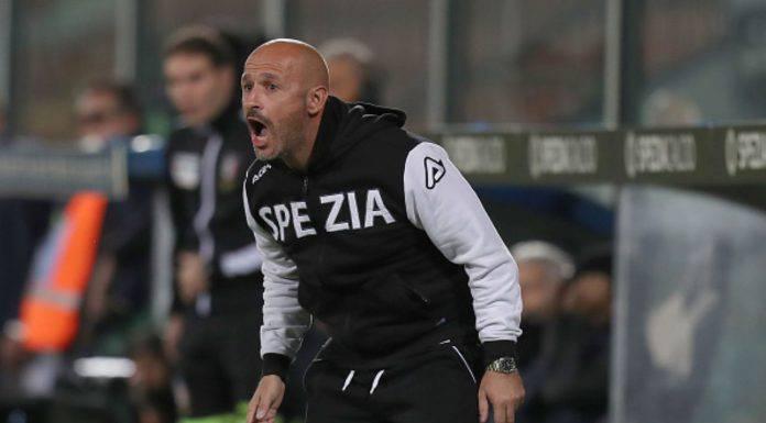 Calciomercato Spezia Torino Maggiore Bologna Fiorentina