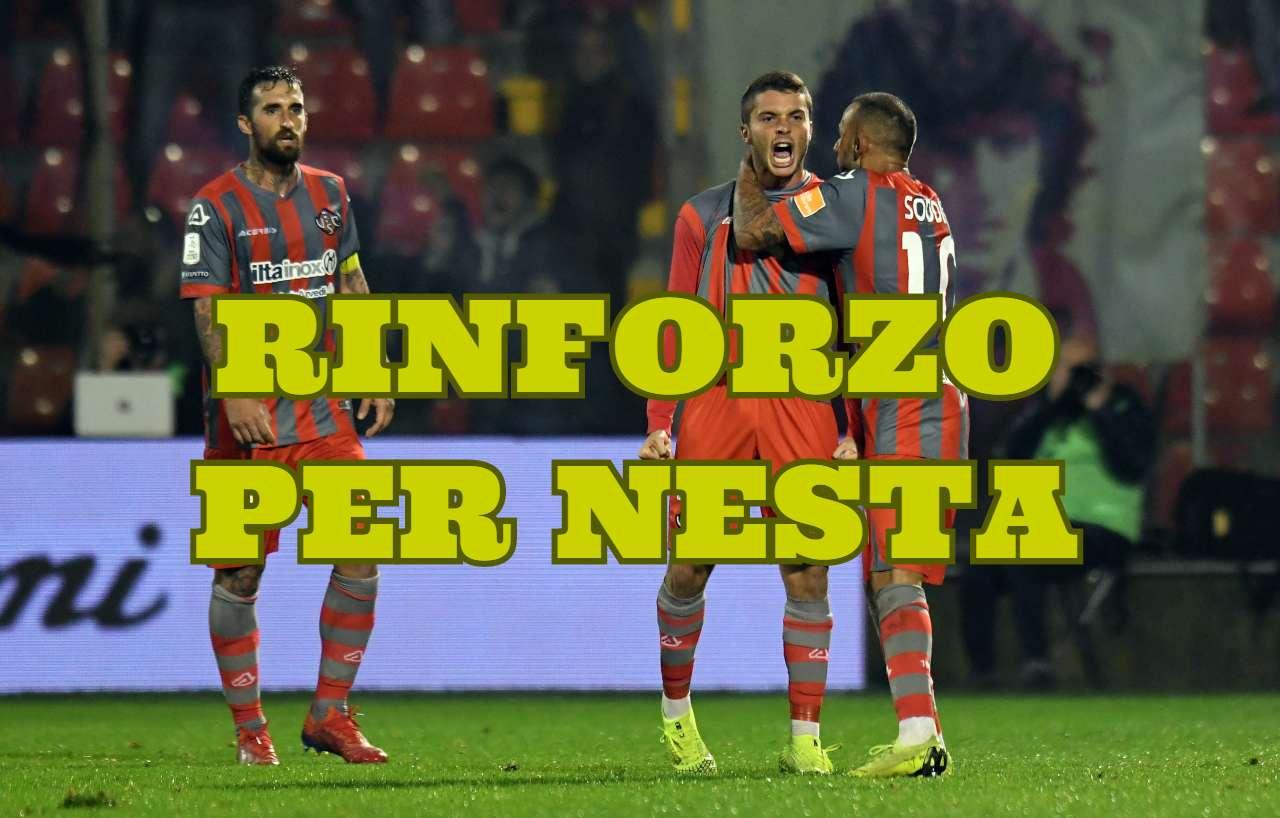 Calciomercato Frosinone, idea dalla Lazio per Nesta: ecco Palombi